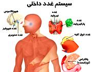 با 10 غده داخلی بدن آشنا شوید