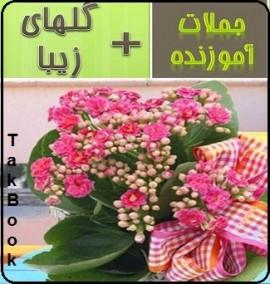 دانلود رایگان کتاب جملات آموزنده همراه گلهای زیبا