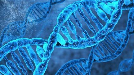 مقاله DNA