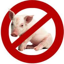 دلایل قرآنی حرام ومضر بودن گوشت خوک
