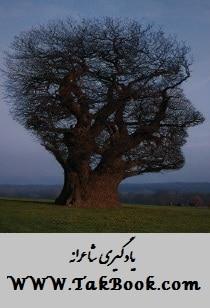 دانلود کتاب یادگیری شاعرانه