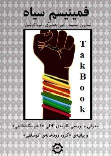 دانلود کتاب فمینیسم سیاه