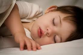 درباره خواب روزانه چه می دانید
