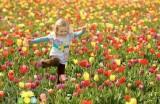 تندرستی در بهار با رعایت این 8 مورد