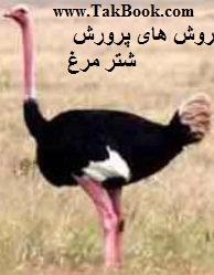 دانلود کتاب روش های پرورش شتر مرغ
