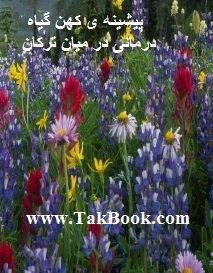 دانلود کتاب پیشینه ی کهن گیاه درمانی در میان ترکان