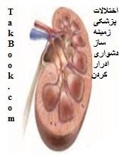 دانلود کتاب اختلالات پزشکی زمینه ساز دشواری ادرار کردن