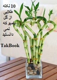 دانلود کتاب 10 نکته طلایی از گل بامبو که نمی دانستید
