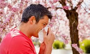 کنترل و درمان آلرژی فصلی