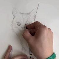 تکنیک های طراحی از نوع سیاه قلم